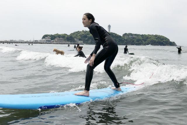 湘南サーフィンスクール
