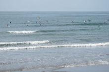 旭かんぽサーフィン